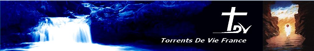 Torrent de Vie